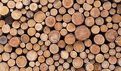 stacked logs.jpg