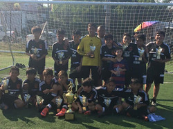 WP Academy Champions