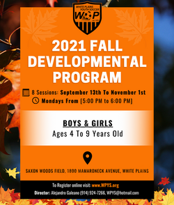 Fall 2021 Developmental