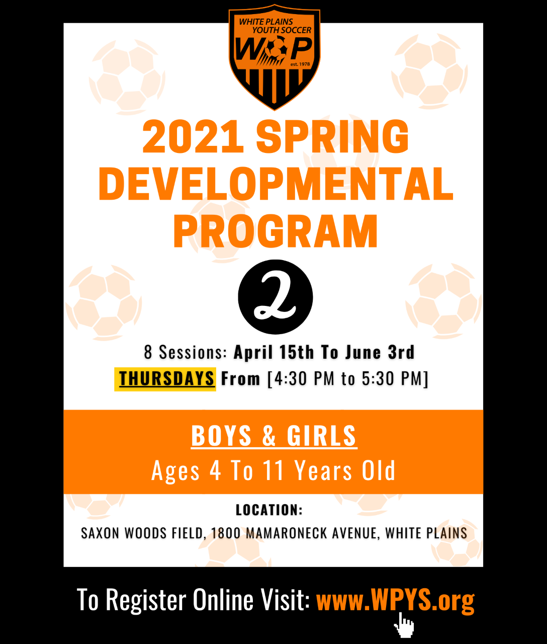 Spring 2021 Developmental Program #2
