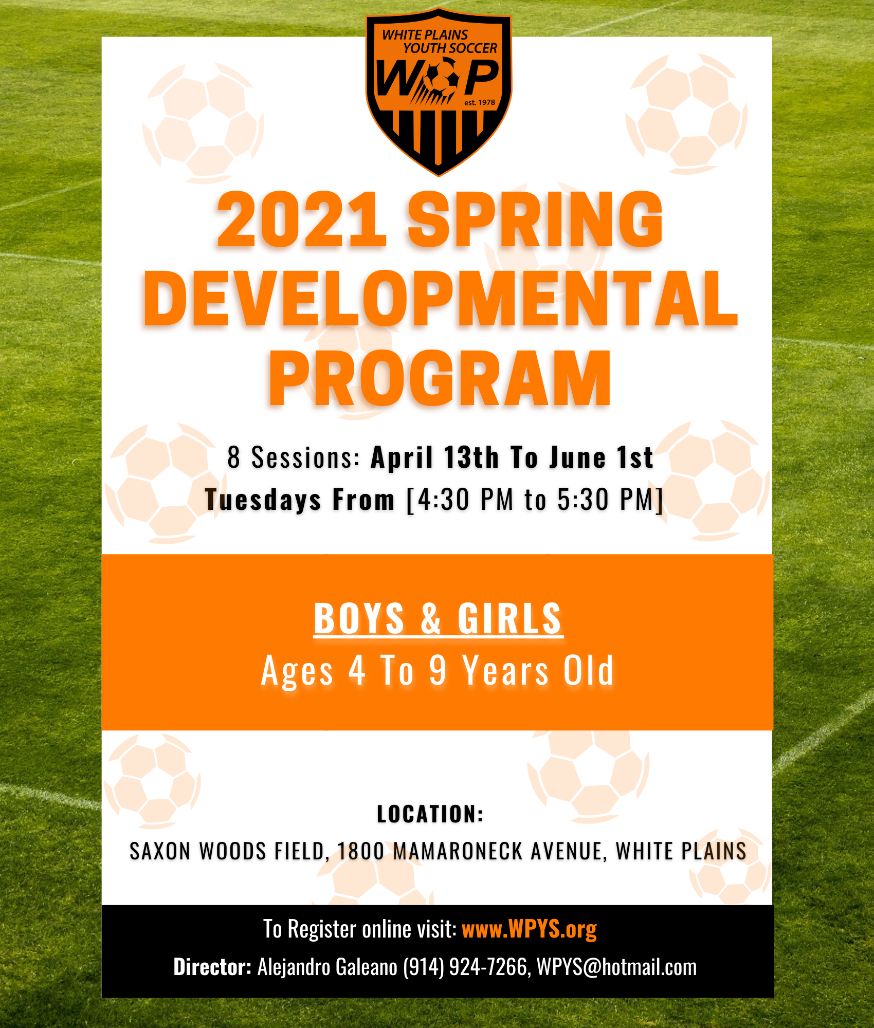 Spring 2021 Developmental Program