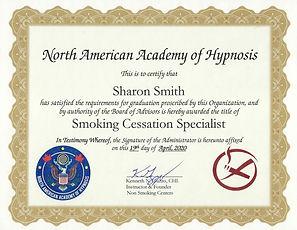 Guzzo certificate.jpg