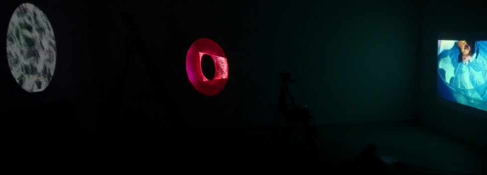 photograph of installation 2016_edited.j