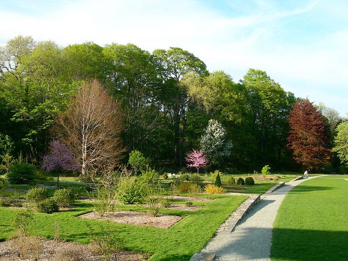 arnold_arboretum_garden.jpg