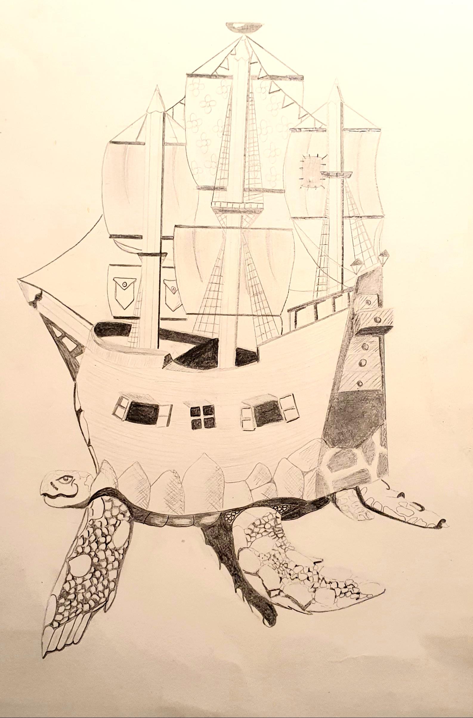 Schildkrötenschiff