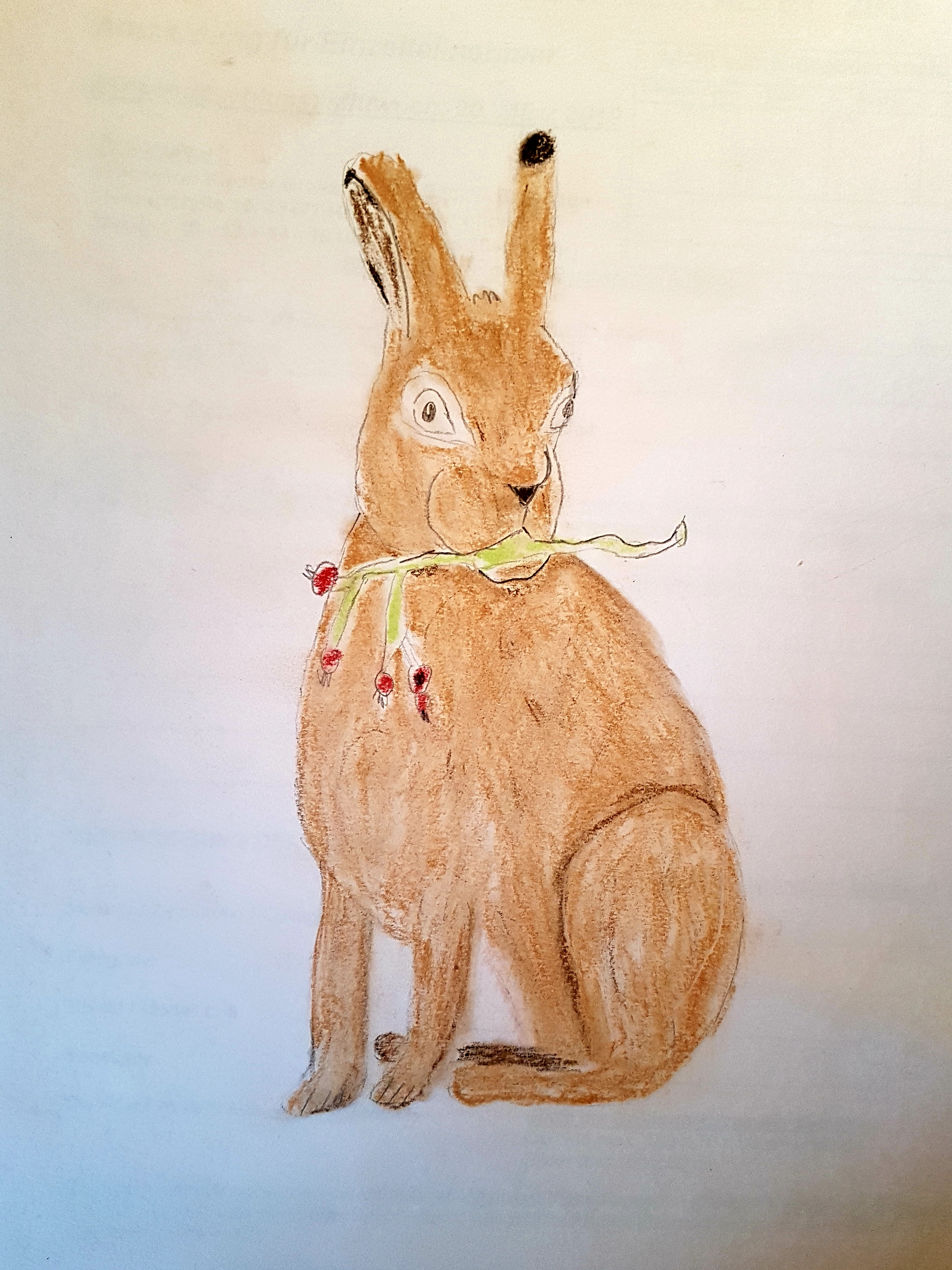 Hase Pastell