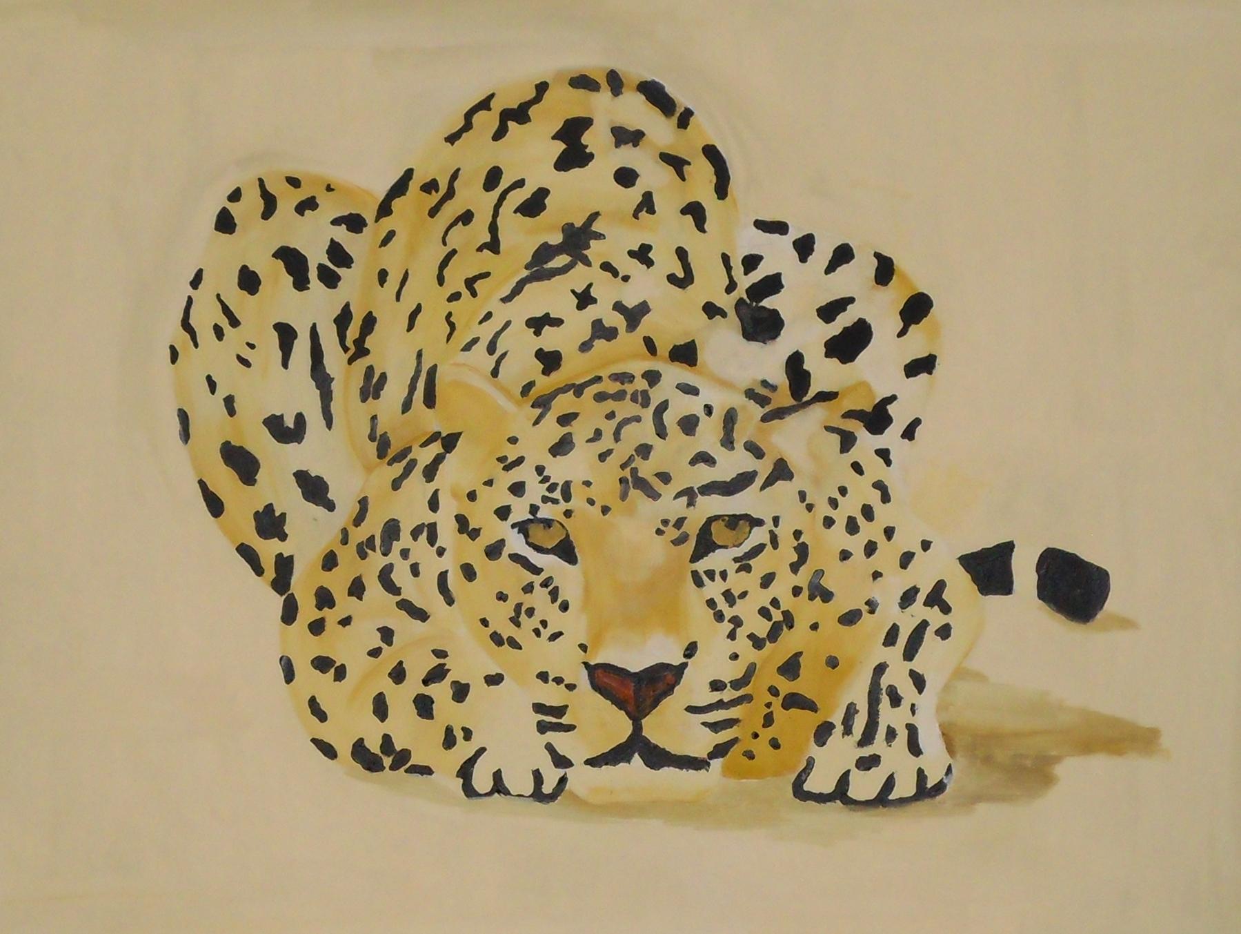 Wüstenleopard
