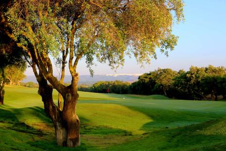 Montenmedio Golf & Country Club - Ein facettenreiches Golfresort, Landgut und Hotel