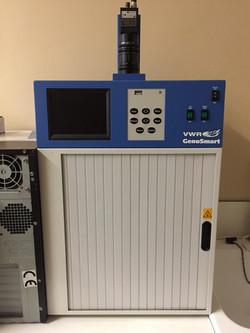 Fluorescence UV transilluminator