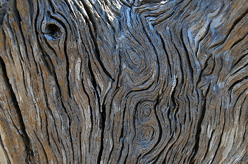Peter Szarmach | Natural Abstract #77 | Photography