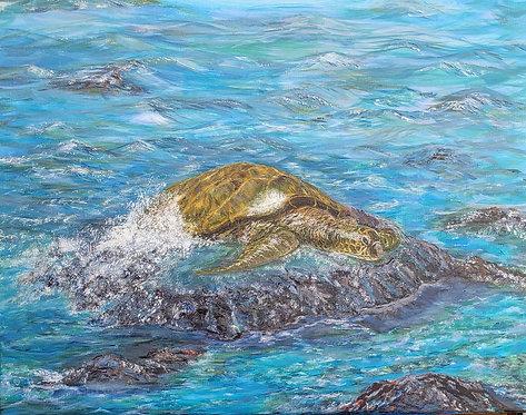 Theresa Williams   Maui Turtle   2D