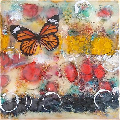 Monica Josephson   Butterfly Dance