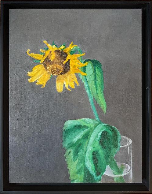 Lena Garcia | Sunflower | 2D