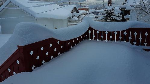 Dana Martell | Newfallen Snow | Photography