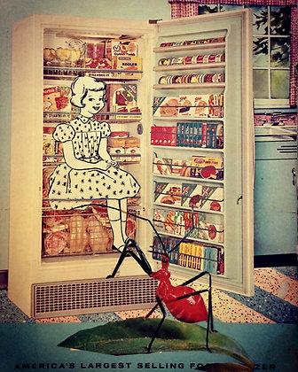 Elsa Bouman | Cool Sally