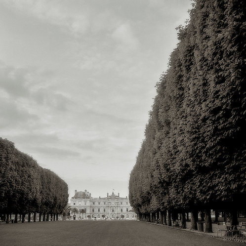 Mel Curtis   Morning Walk in the Luxembourg Garden, Paris   Photography
