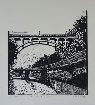 Rebecca Shelton | 34th Street Bridge