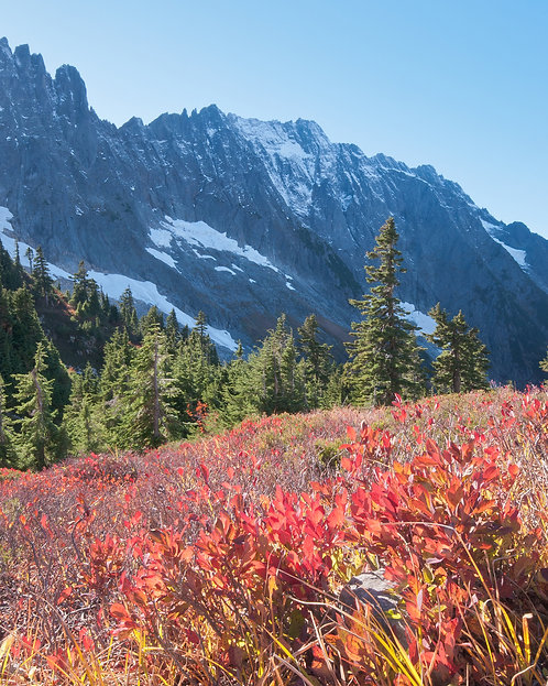 James Anderson   Cascade Pass Autumn   Photography