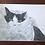 Thumbnail: Erin Nix   Cozy Cat