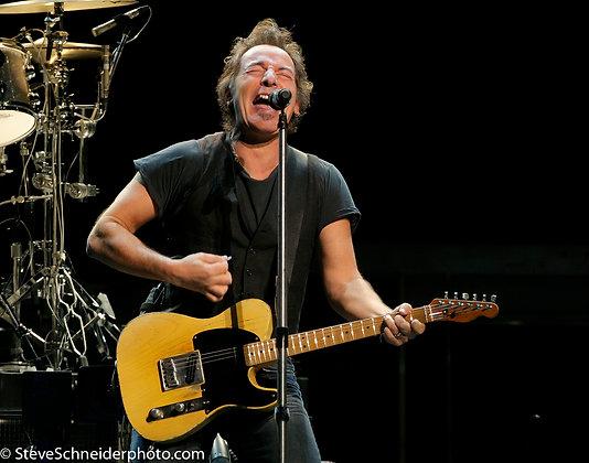 Steve Schneider |  Bruce  Springsteen