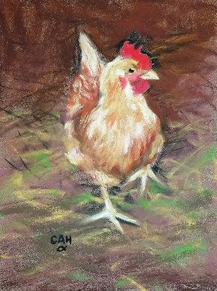 Cheryl A. Hufnagel | Chicken Little