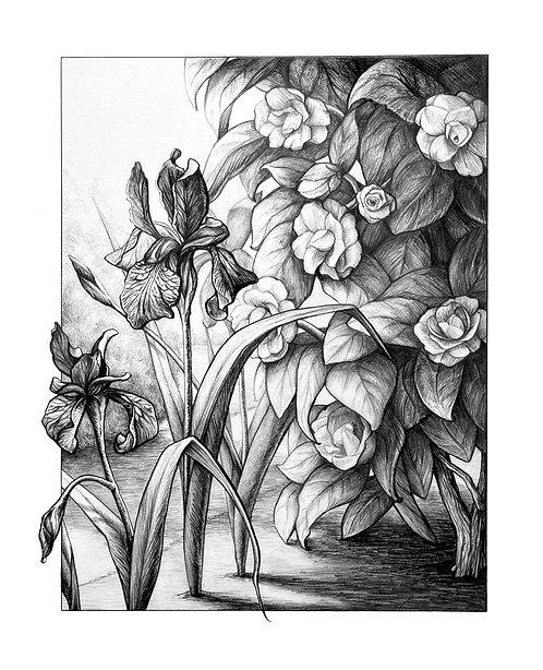 Kristin Frost   Spring Light   2D