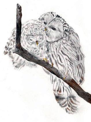 Jennifer Munson | Ural Owls II