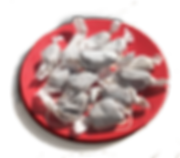candy plate.png