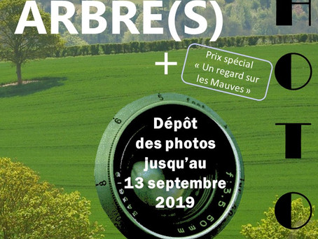 """►Participez au Concours Photos """"Arbre(s)"""""""
