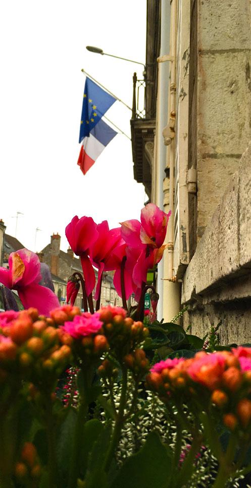 Fleurissement extérieur Mairie