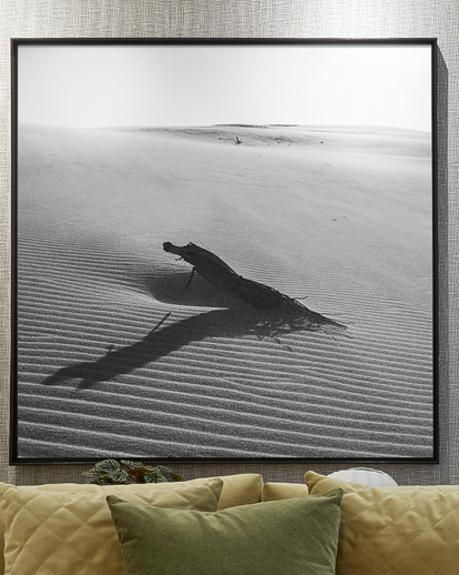 Quadro Deserto P&B