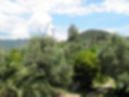 torre_orologio_levanto