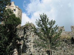 torre_dell'orologio_levanto