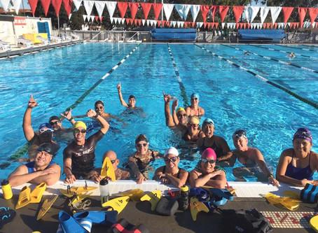Technique Swimming & Race Swim Strategies in the Pool