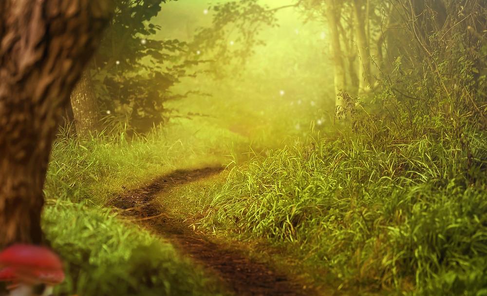 Mes soins énergétiques racontés : Soin Ciel et Terre : Balade avec les Fées et virée familiale dans les étoiles...