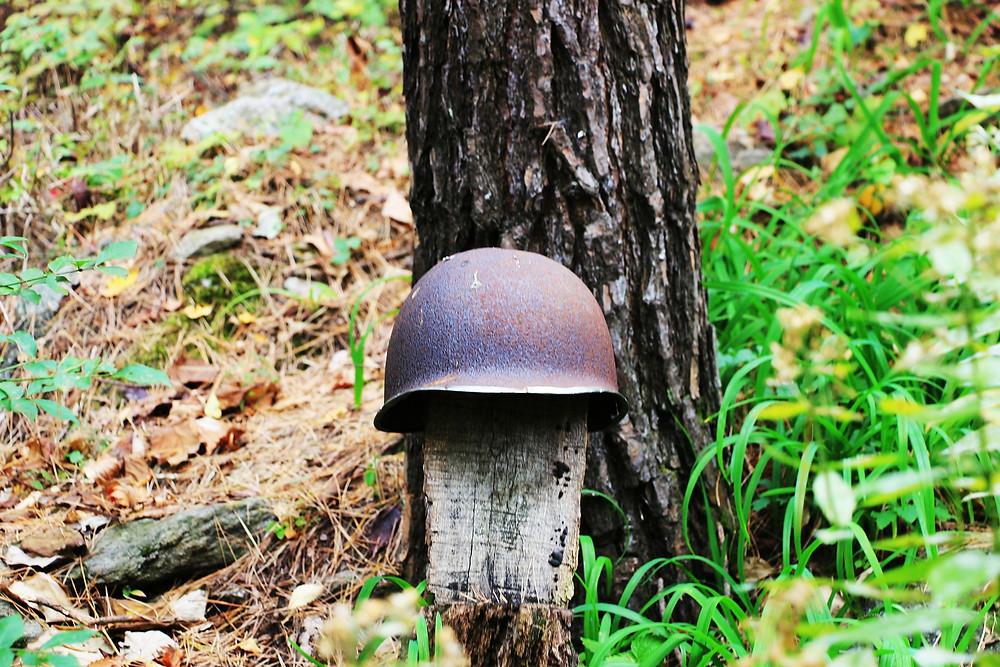 Mes soins énergétiques racontés : Soin de Vie(s): Camp de prisonniers durant la guerre de Corée (**scènes très sensibles**)