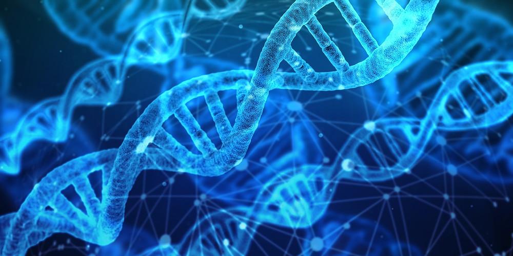 Soin énergétique Ciel et Terre de J. : Purification par l'Eau et reprogrammation ADN...