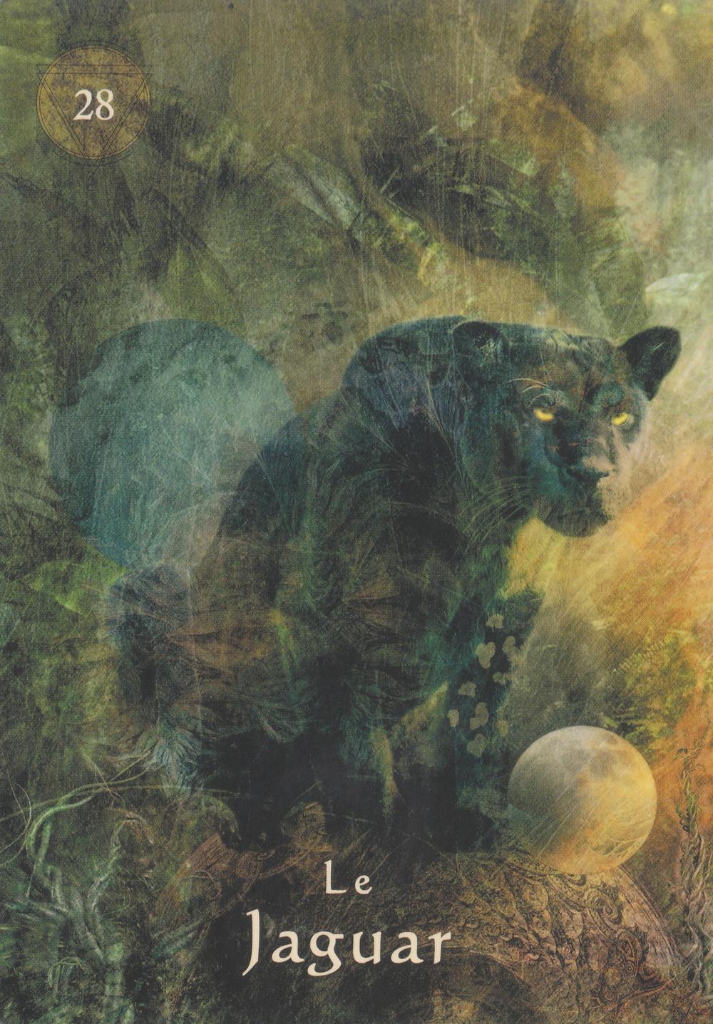 Carte de L'Oracle du Chaman Mystique, d'Alberto Villoldo - Energies du 19 au 25 avril 2021 (Portail 22-4) : Oser se laisser toucher pour sortir de l'ombre
