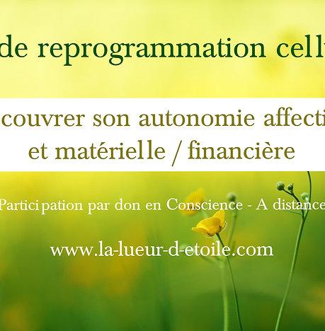 Soin de reprogrammation : Recouvrer son autonomie affective et matérielle -01/08