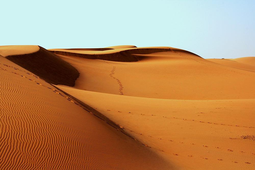 Mes soins énergétiques racontés : Manifester son Pouvoir Créateur : Rituels en plein désert où le Silence est d'Or