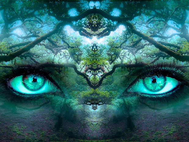 Soin de Vie(s) : Reprendre son plein Pouvoir Créateur - Recouvrement d'âme