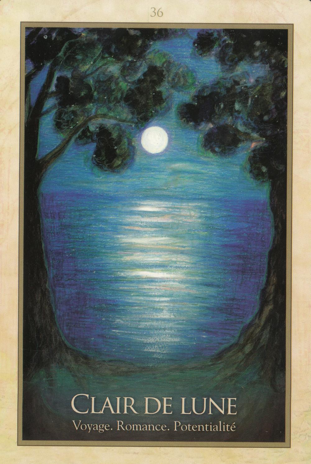 Carte tirée de L'Oracle de Gaïa de Toni Carmine Salerno - Clair de Lune - Voyage. Romance. Potentialité