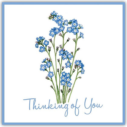 TDT18048 Forget Me Not