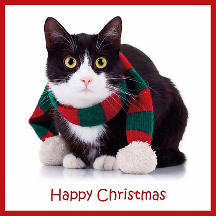 T17052 Cats Christmas Scarf - Cost per pack isjust £1.50 (inc vat) rrp £3.00