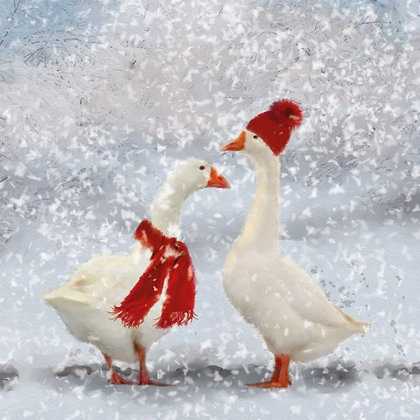 T18003 Winter Geese - Cost per pack isjust £1.50 (inc vat) rrp £3.00