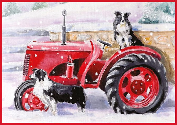 T17108 Collies Christmas - Cost per pack isjust £1.50 (inc vat) rrp £3.00