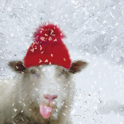 T18007 Sheep's Red Hat - Cost per pack isjust £1.50 (inc vat) rrp £3.00
