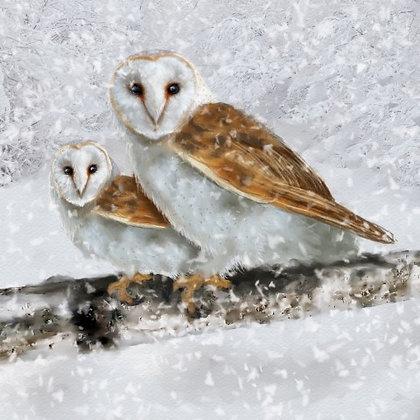 T18004 Owls - Cost per pack isjust £1.50 (inc vat) rrp £3.00