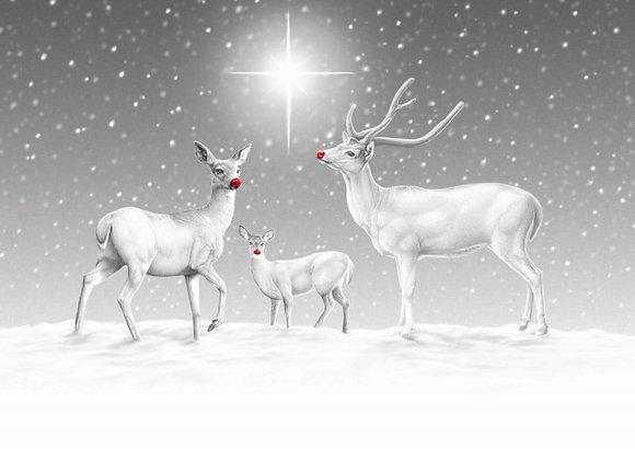 12113 Reindeer in Snow
