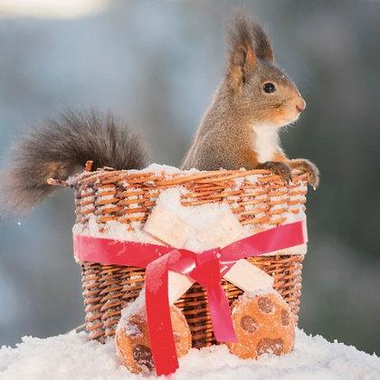T18117 Squirrels Hamper - Cost per pack isjust £1.50 (inc vat) rrp £3.00
